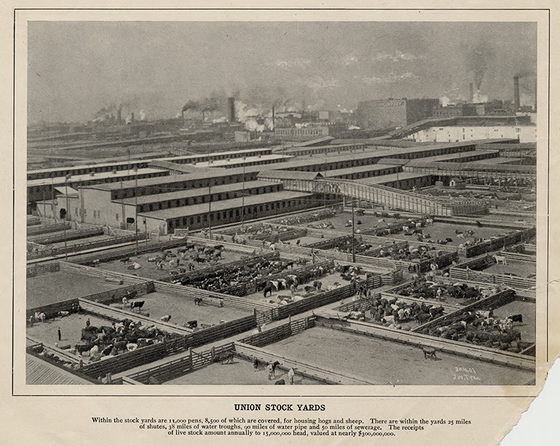 Union stockyards from 'Views of Chicago and Vicinity.' pic 1 Description: Union stockyards from 'Views of Chicago and Vicinity;' Chicago, IL. Source: ICHi-52216. Reproduction of photomechanical print, printer unknown. Date: 1890-1899.